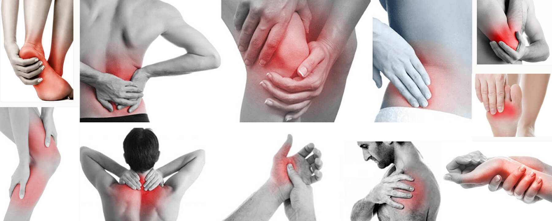 Physiotherapists & Pain Management